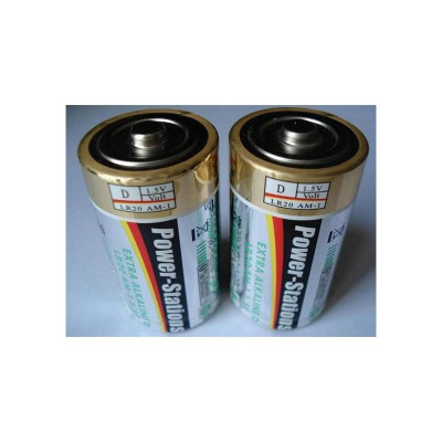 D-Type battery